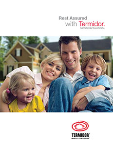 Termidor Treatment Brochure